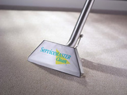 derby carpet cleaning