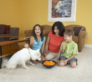 Carpet care tips for extending the life of your carpet.
